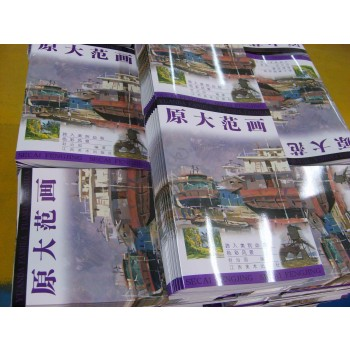 Customized high quality Hardcover Books (QualiPrint) , Full Color Printing