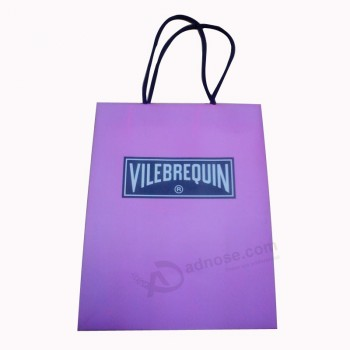 Custom Packaging Paper Bag for Shopping with Handle and Logo (SW105)